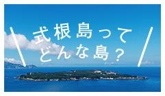式根島ってどんな島