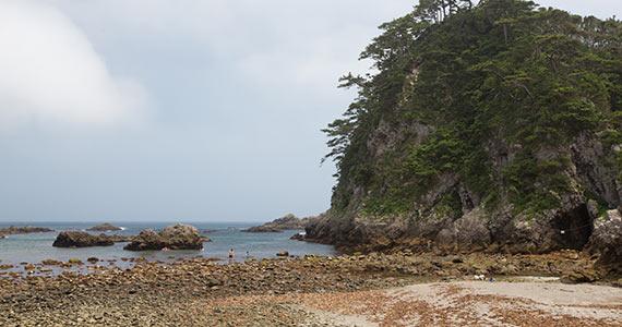 潮が引いた海岸