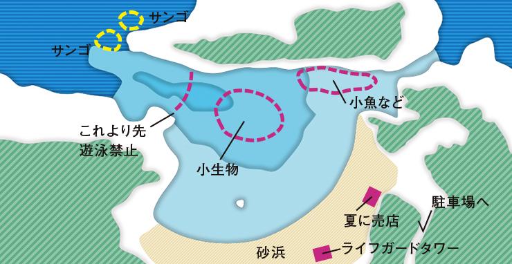 泊海中ポイントの地図