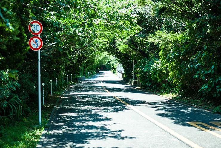タイトル「夏休みの道」